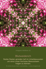 HeilKreis-fbg0032