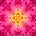 01-Heckenrose-4er